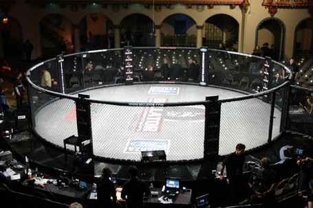 Bellator_cage_medium