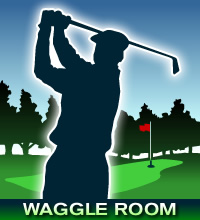 Waggleroom_medium