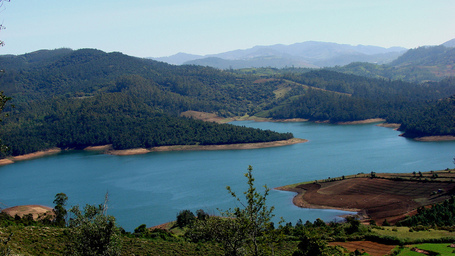 Emerald_lake_nilgiris_medium