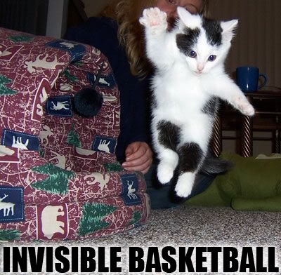Invisible-basketball_medium
