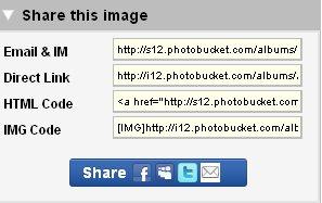 Photo7_medium