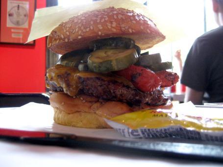 2010_0608_strasburger1_medium