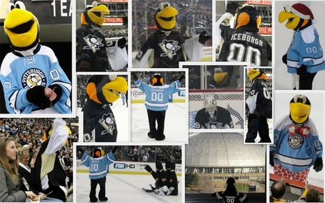 Collage_20iceburgh_206_medium