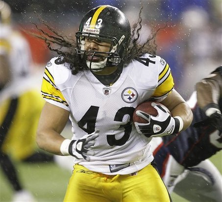 Large_troy_polamalu_medium