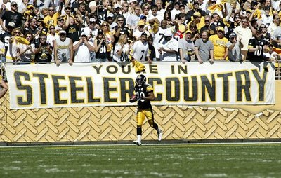 Steeler_country_medium