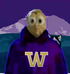 Uwdawg3-1_medium