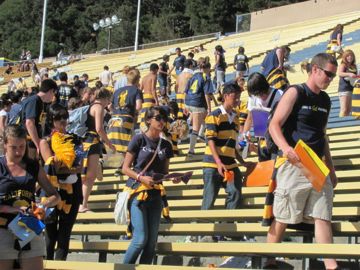 Cal v. UC Davis 9.4.10 Photo Essay II - California Golden