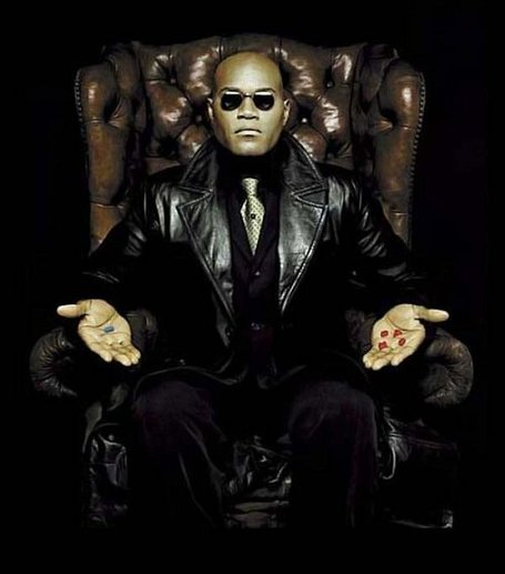 Morpheus-red-or-blue-pill-the-matrix-1957140-500-568_medium