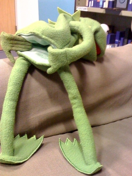 Kermit-goatse-21442-1248344208-4_medium
