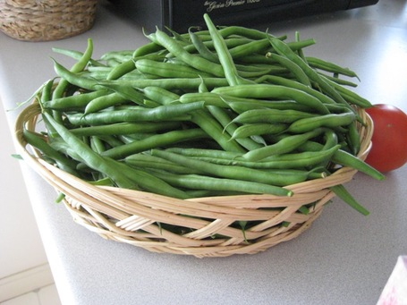 Greenbeans_medium