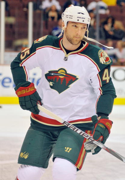 Minnesota_wild_v_64aa_medium