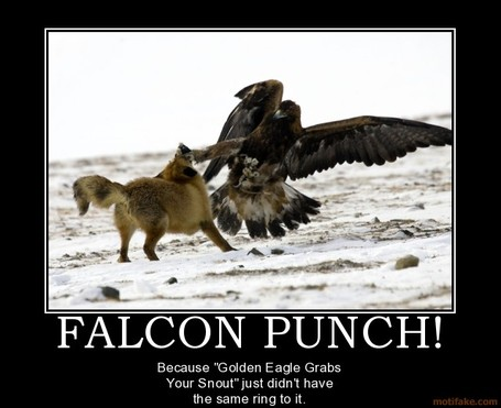 Falcon-punch-falcon-punch-eagle-demotivational-poster-1233485592_medium