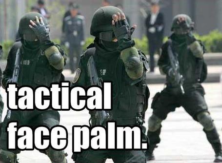 1290491531371-tacticalfacepalm_medium