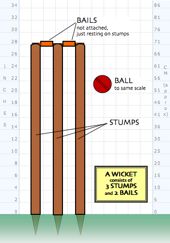Cricket_-_stumps_medium