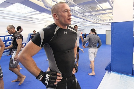 Georges_st_pierre_5_medium