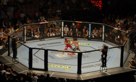 Ufc_20octagon-thumb-1000x609-833_medium