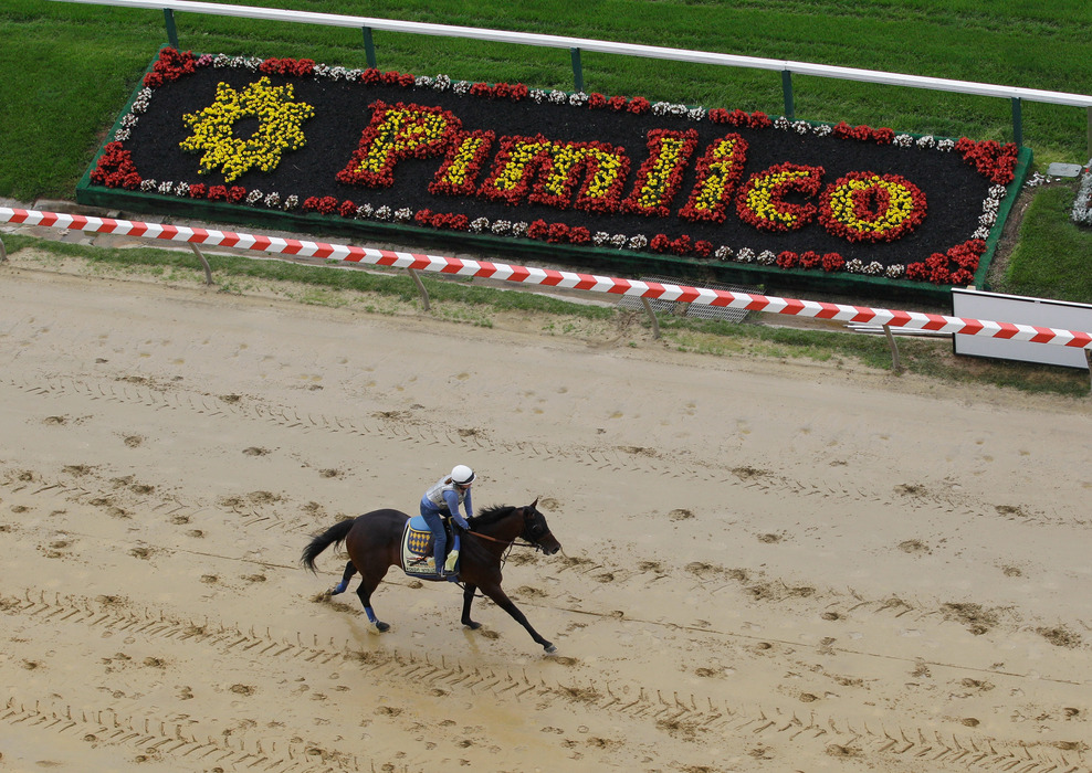 preakness stakes 2011. Preakness Stakes 2011: Expert