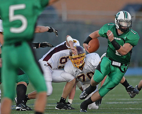 Jon_20ross_20vs_20badin_20hamilton-journal_20news_20pic_medium