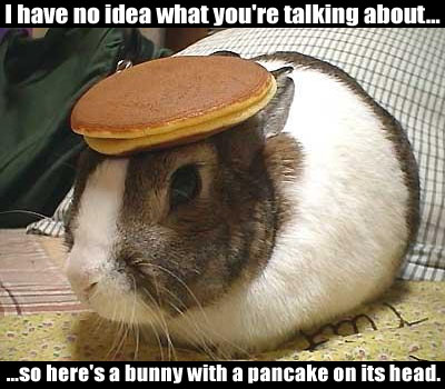 Pancake_bunny_medium