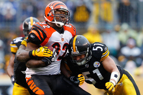 James_farrior_cincinnati_bengals_v_pittsburgh_ya0vyu3k9bil_medium