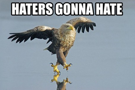 Haters-gonna-hate-eagle_medium