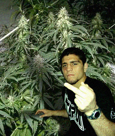 Nick_20diaz_20weed_medium