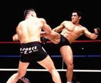 Frankshamrock_display_image_medium