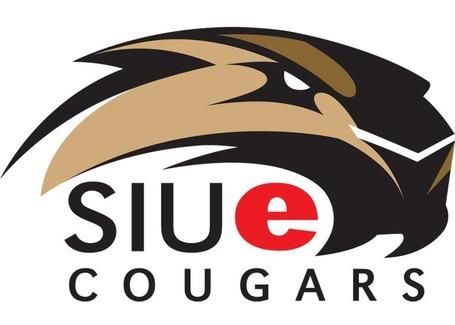 Cougar-lg_medium