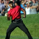 Tiger_woods_ii