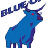 Logo-blueox
