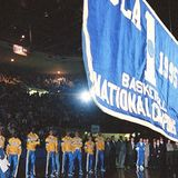 1995_banner_raised__cropped_