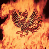 Coverphoenix