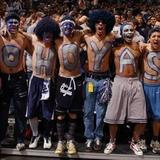Go-hoyas-photo