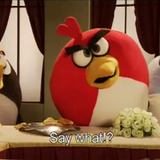 Angry-birds-live-action-video