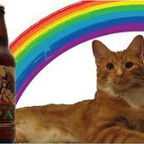 Rainbowkittybeerstoneruination1
