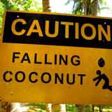 Coconut-sign