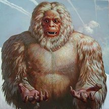 Yeti2