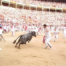 Pamplona7