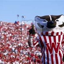 Badger_game
