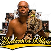 Silva_2010_banner