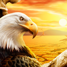 Eagle-ipad-wallpaper