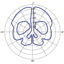 Skull-logo