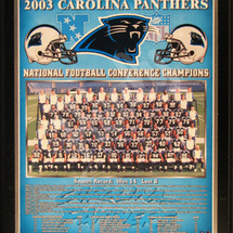 Carolina-panthers-nfc-champions-healy-plaque-3332151