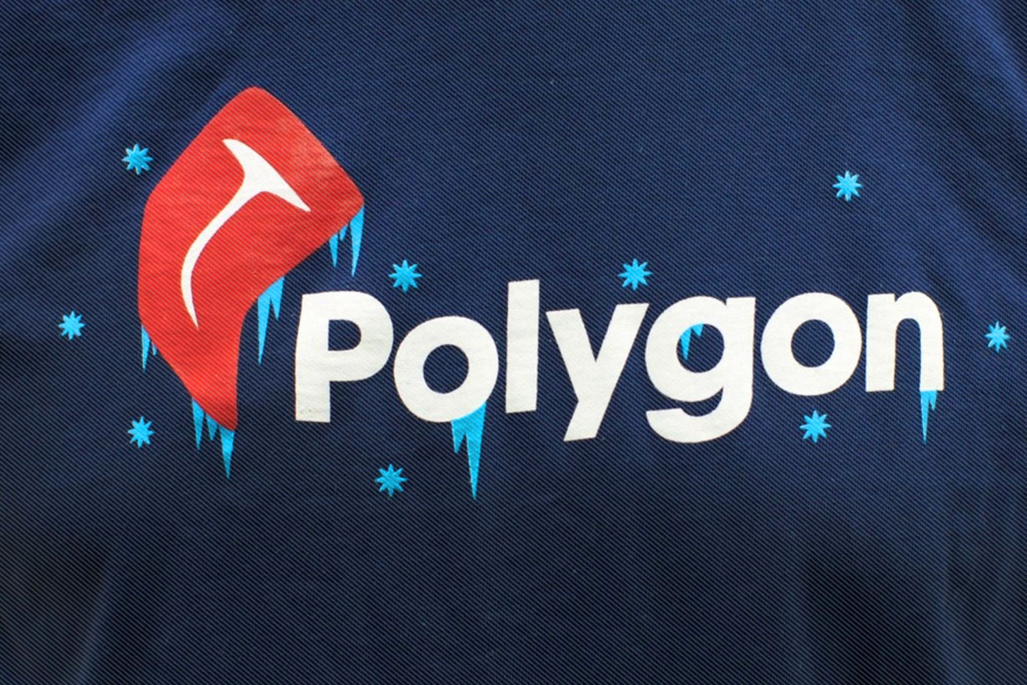 Polygon Freezer Beef T-shirt