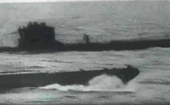 Writer proves that Discovery aired fake image of Megalodon