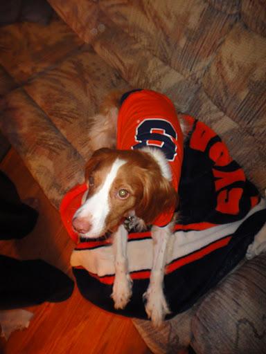 Otto The Orange Halloween Costume